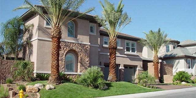 frontyard-landscaping-lawn