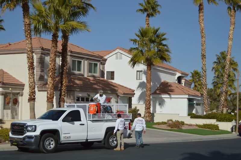 Las Vegas Landscaping And Henderson Design Cacti Landscapes