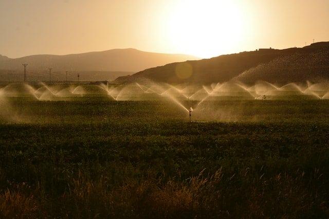 Irrigation System check