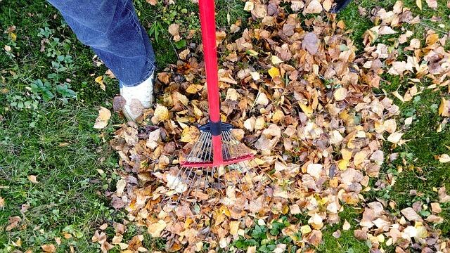Spring Yard Clean Up Checklist